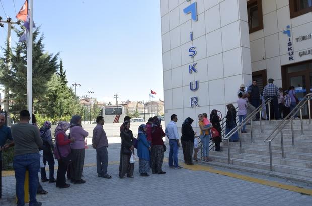 Doktora ve yüksek lisans mezunları İŞKUR'da iş kuyruğunda bekliyor