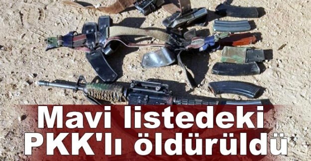 MAVİ LİSTEDE ARANAN PKK'LI ÖLDÜRÜLDÜ