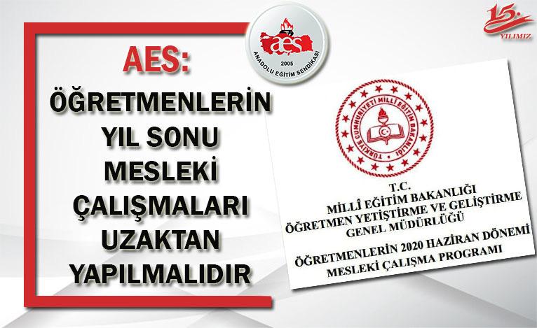 AES: ÖĞRETMENLERİN YIL SONU MESLEKİ ÇALIŞMALARI UZAKTAN YAPILMALIDIR