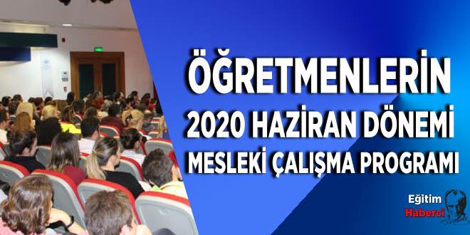 ÖĞRETMENLERİN 2020 HAZİRAN DÖNEMİ MESLEKİ ÇALIŞMA PROGRAMI