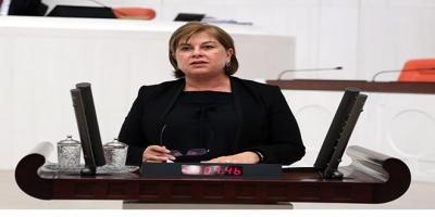 -CHP'Lİ TÜRKMEN: TERÖRE KARŞI GÜBRE YASAĞI ÇİFTÇİYİ MAĞDUR ETMESİN