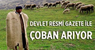 DEVLET RESMİ GAZETE'YLE ÇOBAN ARIYOR