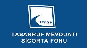 -TMSF BANK ASYA FAALİYETLERİNİ DURDURDU