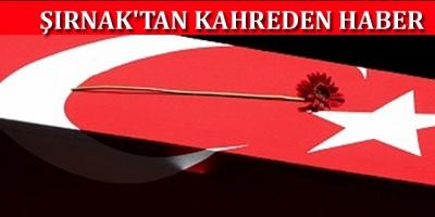 Şırnak'tan kahreden haber
