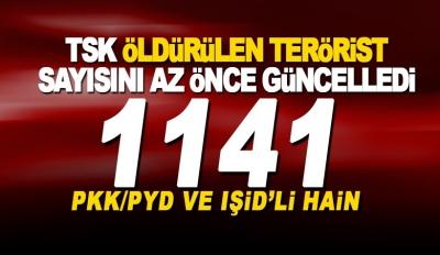 -TSK'DAN AFRİN AÇIKLAMASI: BİN 141 TERÖRİST ETKİSİZ HALE GETİRİLDİ