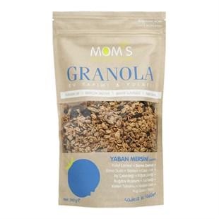 En İyi Şekersiz Granola Çeşitleri için Vegan Bakkal!