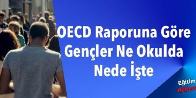 OECD Raporuna Göre Gençler Ne Okulda Nede İşte